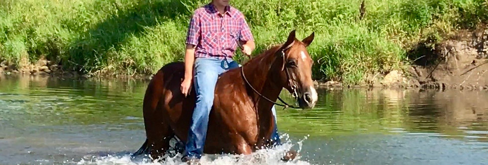 Ya Know Whata Mean-2012 AQHA  Sorrel Mare**Sells Aug. 25 @ Billings Livestock