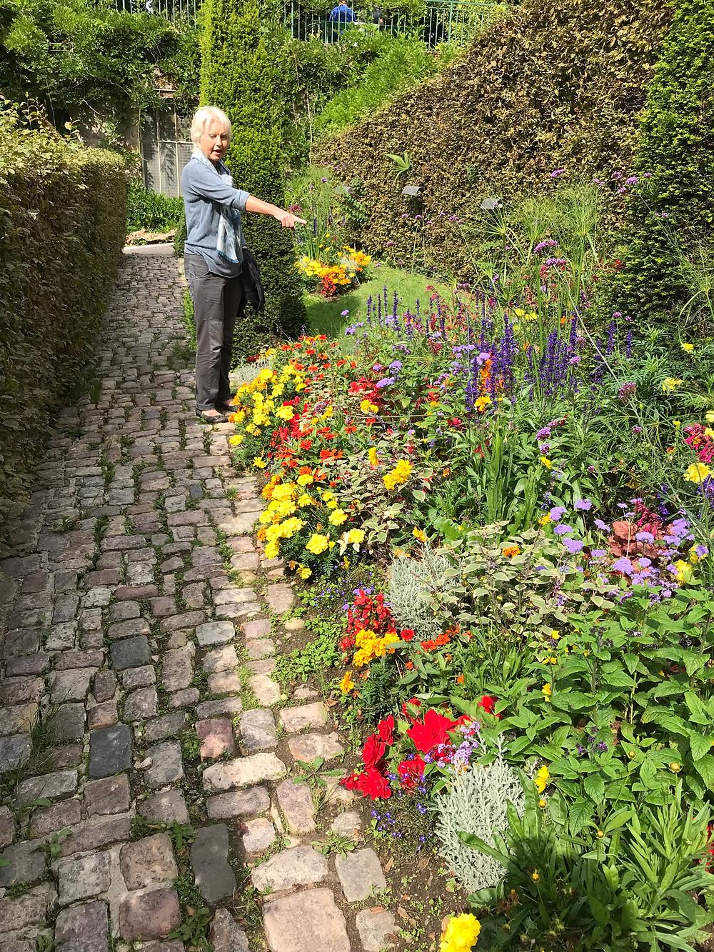 Jardines des plantes, Coutances