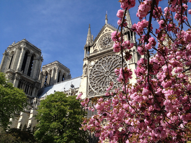 Springtime in Normandy?Actually its perfect all year round