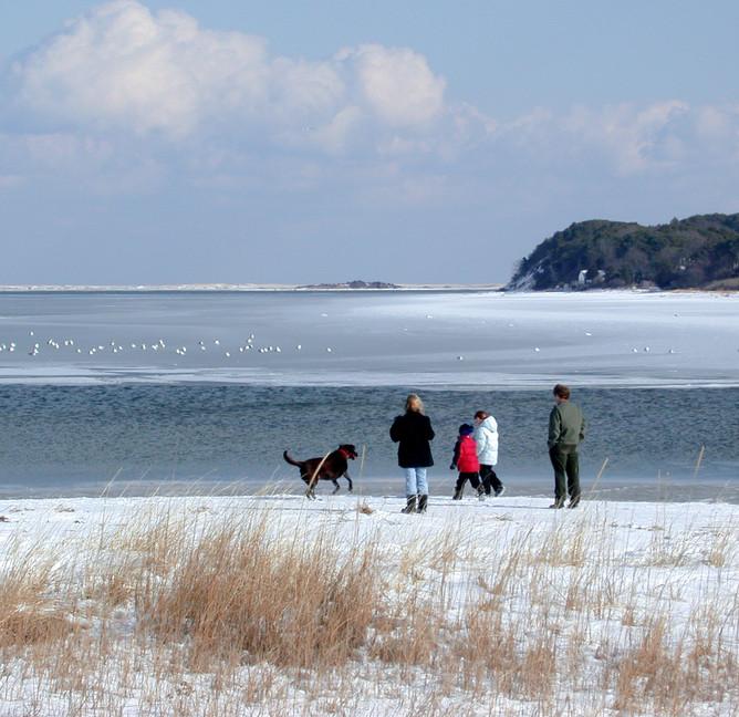 Pleasant Bay Winter