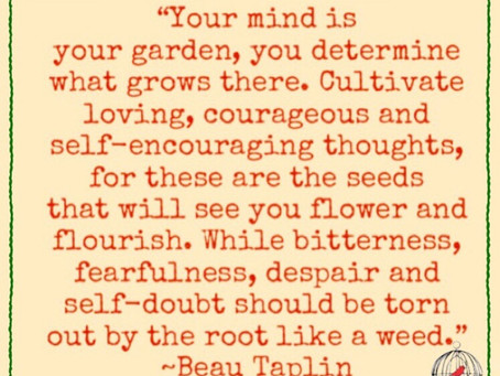 What are you planting in your garden?