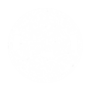 SYW_logo_white_edited_edited.png