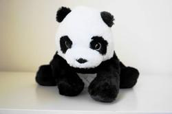 宜家小小熊猫  2 磅