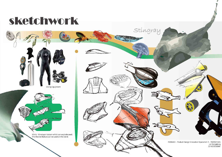 9556847_Xiangdong Lai_Individual Project