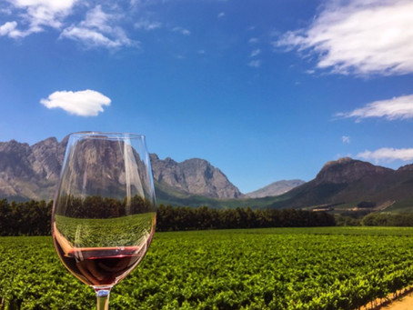 Wines of the Western Cape – what makes them so delicious and why you should be tasting them now!