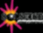 Solstice_black-300x232.png