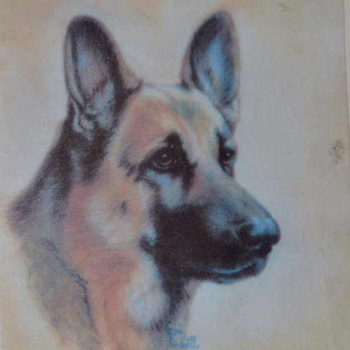 German Shepherd 18x18