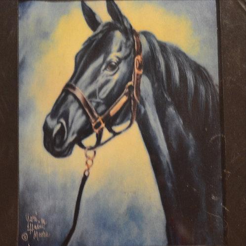 Black Stallion 18x18