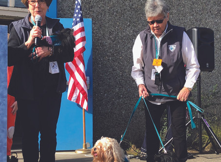 Northwood Students Bark up the Right TREE   - Paws for Healing Reap the Benefits