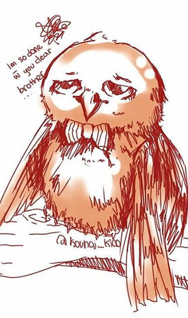 As i doodle on my way to art friends...._Hoody's little brother__#sketch #kuroki_oc #owl