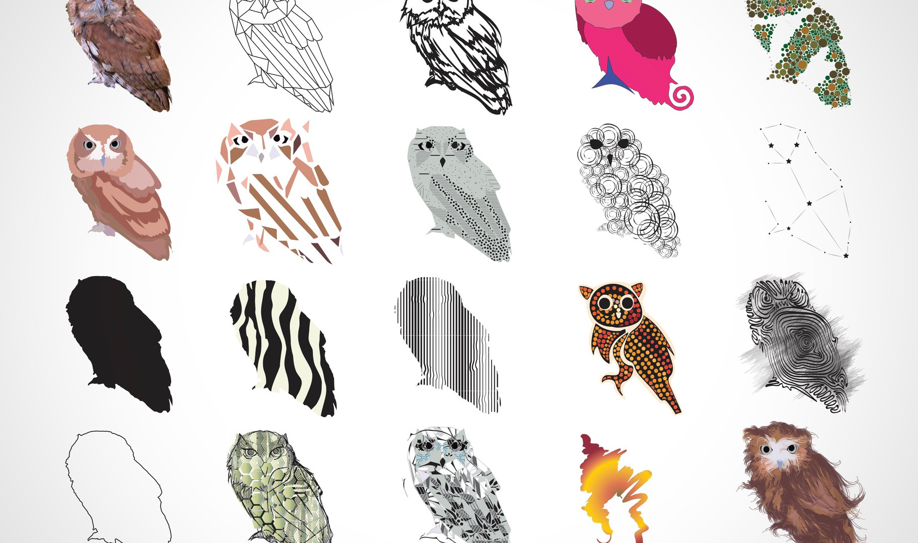 Idealisation Owls