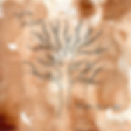 WoodenBonesCoverComplete.jpg