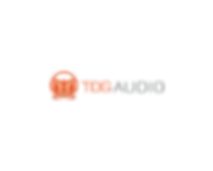 tdg audio logo.png