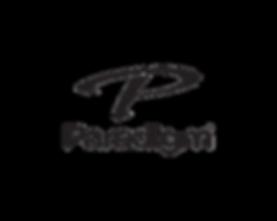 logo paradigm.png