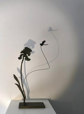 L'iris et la libellule