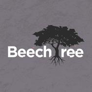Beech Tree-Texture-WebArtboard 2.png