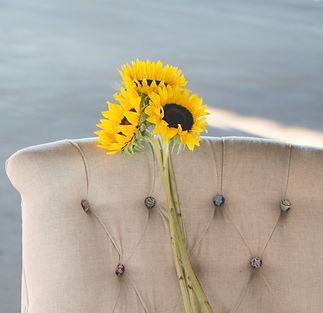 Sunflowers%2520in%2520an%2520armchair_ed