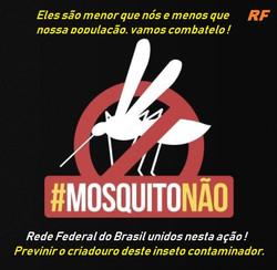 Brasil ao combate do inseto