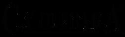 logo_solo-testo.png