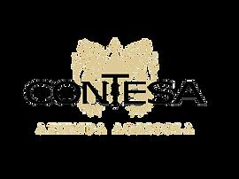 Logo Contesa_trans_def.png