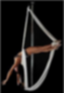 pole silk la grace du tissu la dextérité de la pole AERIAL ART NEVERS