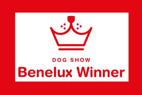 Benelux_winner_logo_home.png