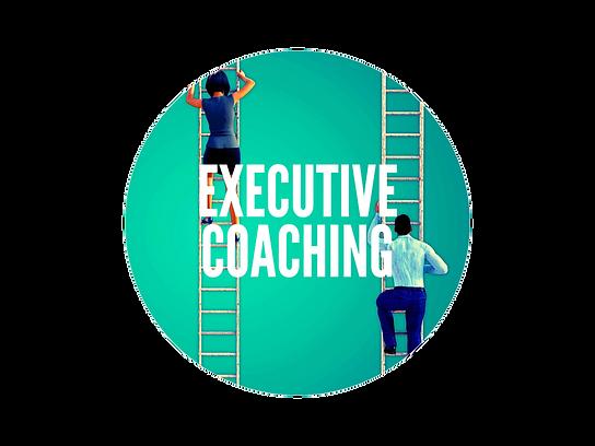 Executive Coaching Brain Powered Coaching