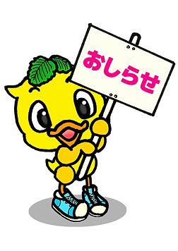 ワンステッピちゃん4.jpg
