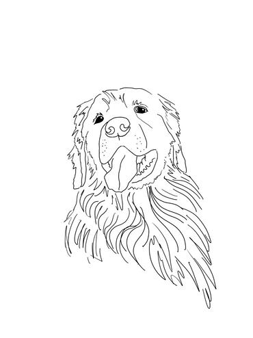 Sometimes I draw Dogs