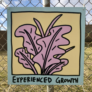 Experienced Growth