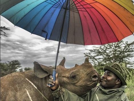 Uma imagem vale por mil palavras - por ocasião do Dia Mundial da Fotografia