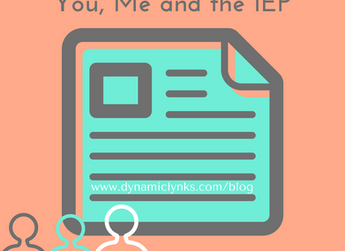 You, Me and the IEP