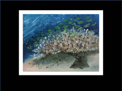 "Underwater painting ""Home"""