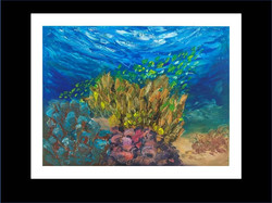 "Underwater Painting""Abu Soma Garden"""