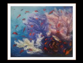 Abu Kafan, soft corals