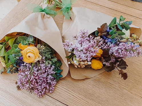 Seasonal Blooms 'Piccola'