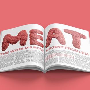 MEAT Editorial Spread