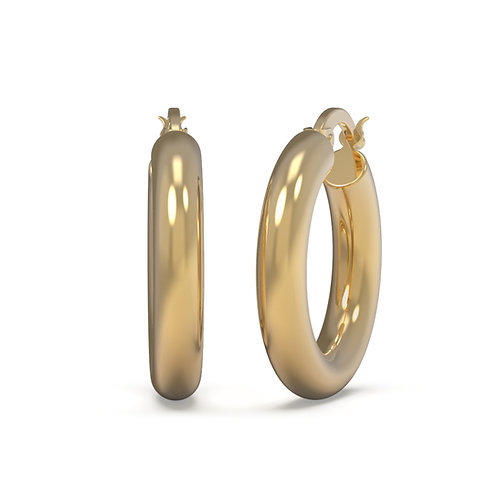 Silvia Chunky Hoop Earrings
