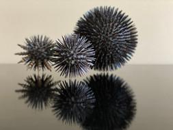 CoronaVirus I, II and III
