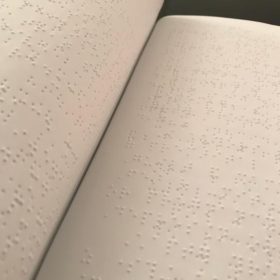 PlayBoy in Braille