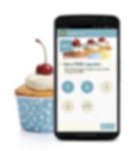Application mobile, LB info, android, apple, store, valence, drôme, pas chère, artisans, catalogue,