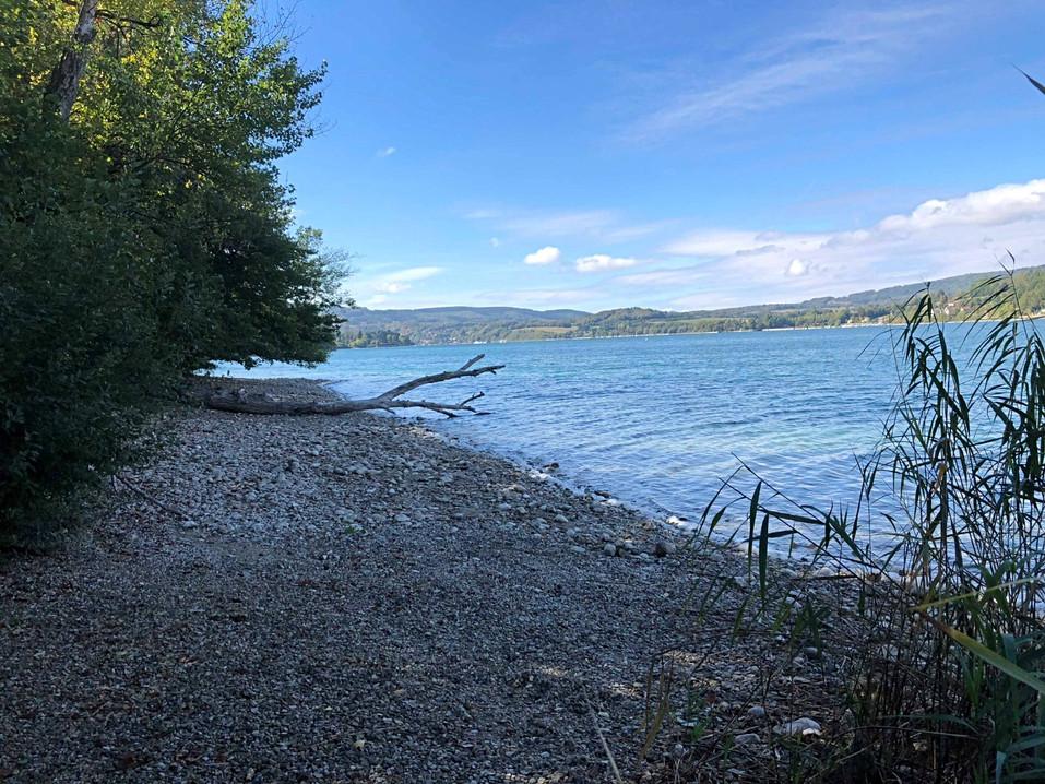 Plage sauvage du lac de Paladru située bas du camping