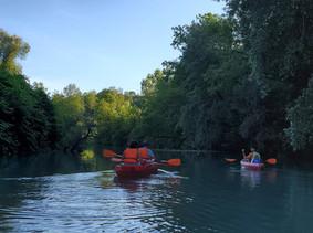 Location Canoë dans la réserve naturelle du Haut Rhône Francais