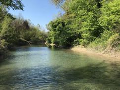 Parcours Canoë sur dans la reserve naturel du Haut Rhône Francais