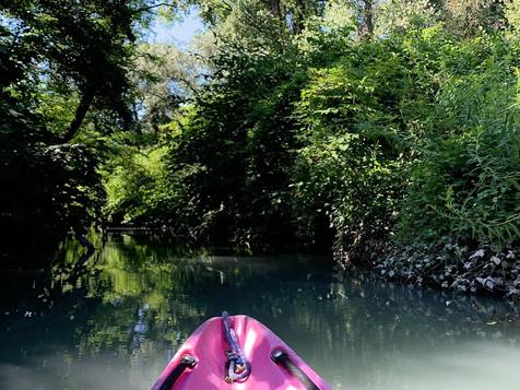 Descente en Canoë / Kayak sur le Rhône et le Guiers
