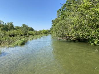 Beauté de la rivière