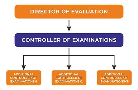 Examination_flow.jpg
