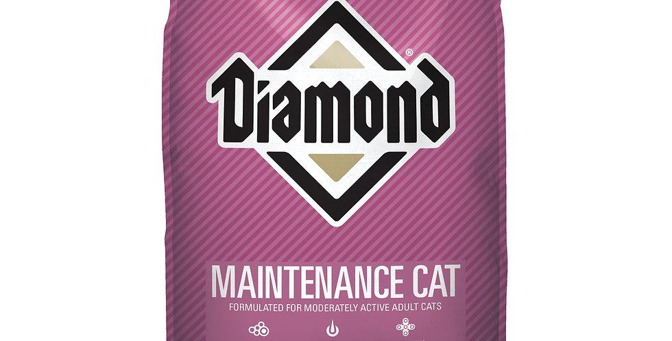 Diamond Adulto gato