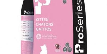 Proseries kitten