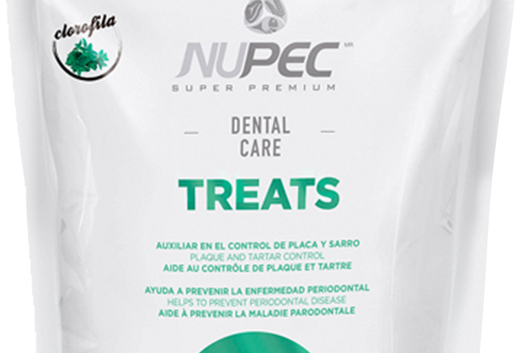Nupec treats dental